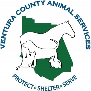 Ventura County Animal Services - Camarillo