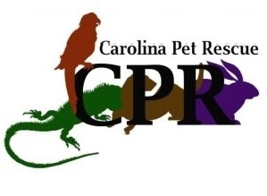 Carolina Pet Rescue