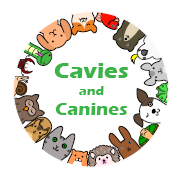 Cavies and Canines Animal Rescue