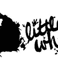 web-transp-logo-200