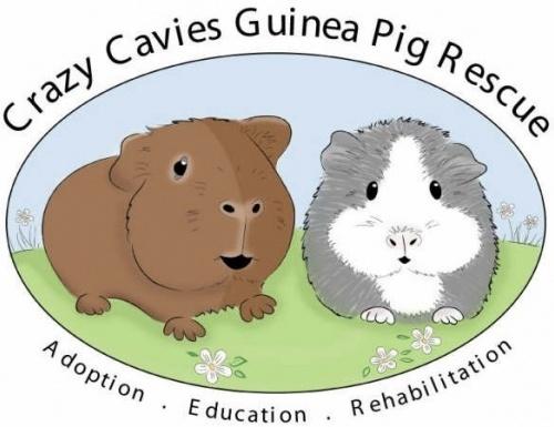 Crazy Cavies Guinea Pig Rescue Inc.